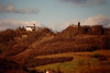 Remigiusberg and Ruine Michelsburg as viewed from the Glan River Valley - (November 29, 1987 / Glan River Valley, Gimsbach, Rheinland-Pfalz, West Germany) -- Remigiusberg and Ruine Michelsburg