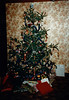 Marjamaa Christmas tree - (December 24, 1987 / #3 Obere Hohl, Gimsbach, Rheinland-Pfalz, West Germany)